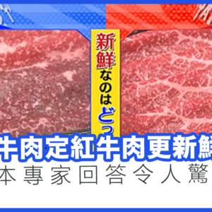 黑紅牛肉定鮮紅牛肉更新鮮