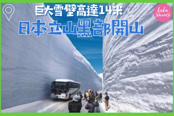 立山黑部巨大雪牆